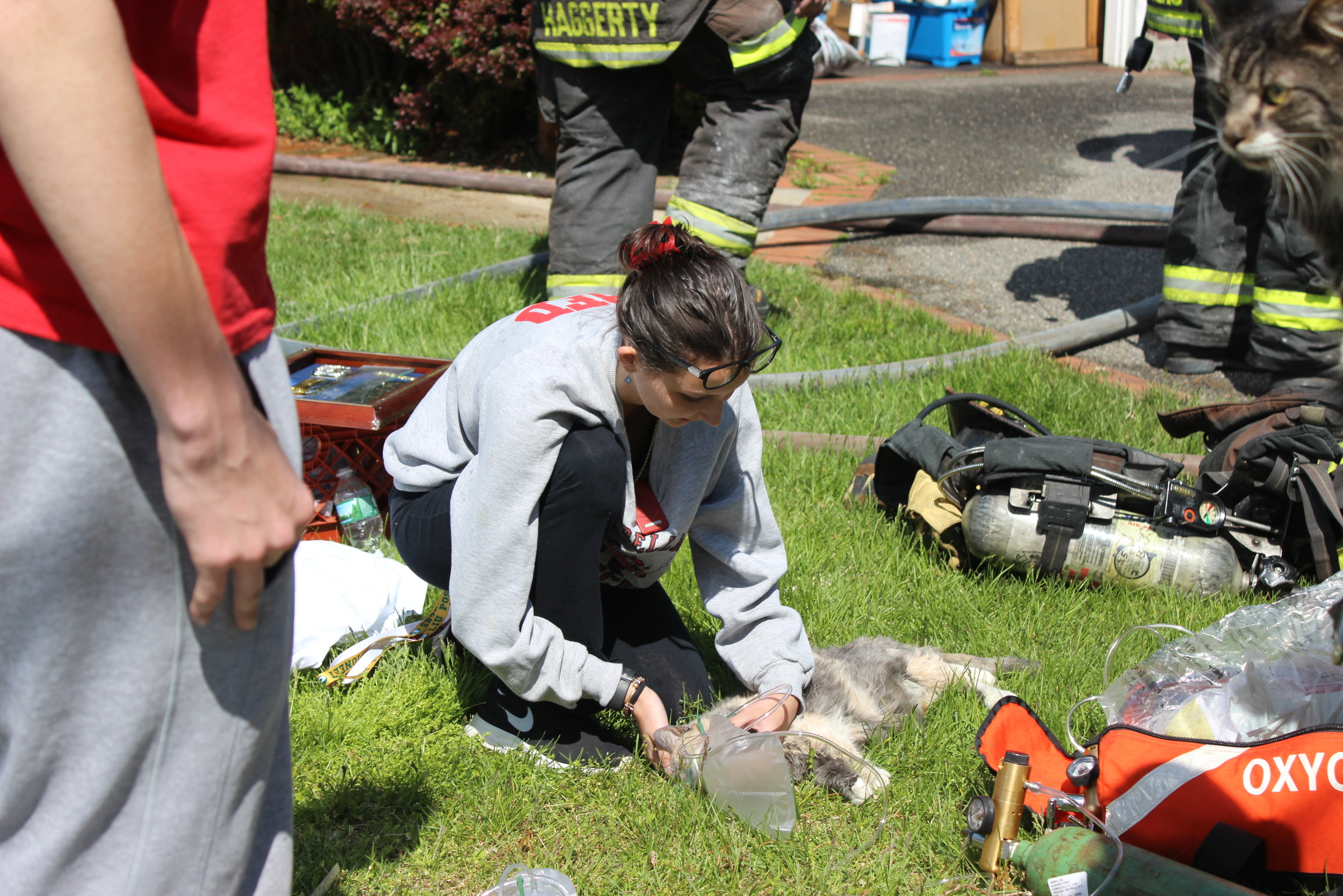 North Merrick junior firefighter Sierra Chasin took care of one of the Cosentino's cats, giving him oxygen and nursing him back to health.