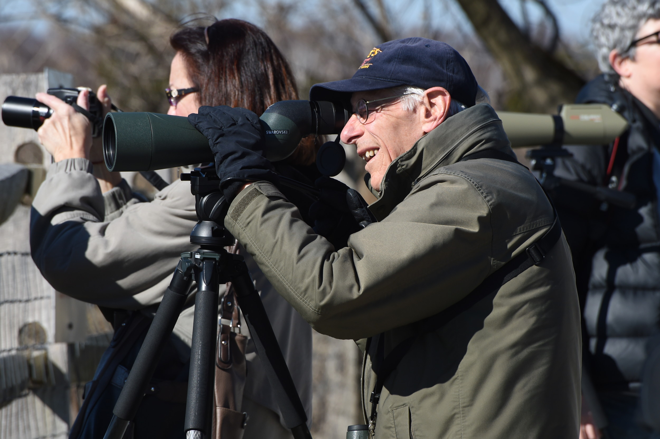 Local South Shore Audubon Society member Joe Landesberg spotted some osprey on a venture in Merrick earlier this spring.