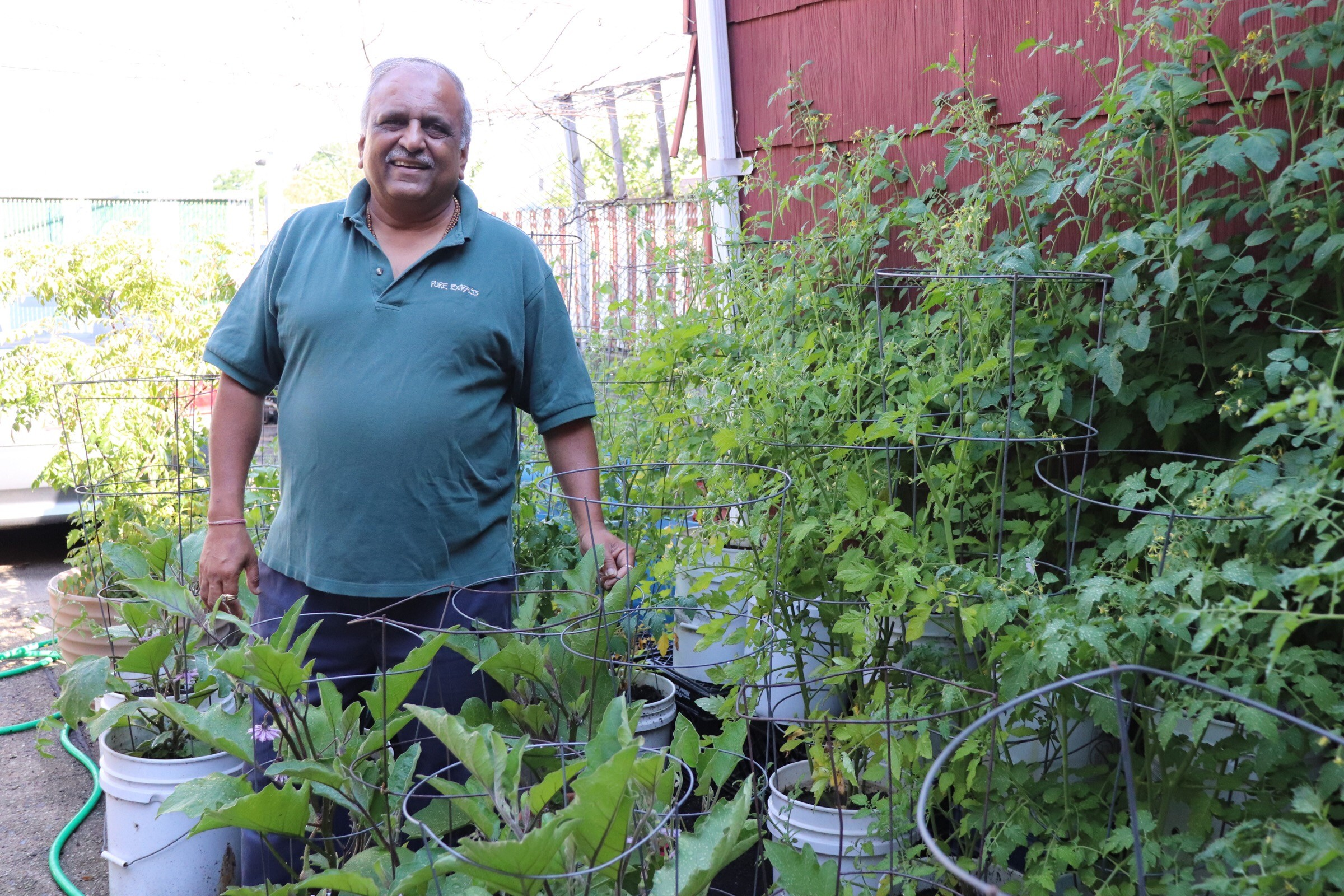 Nat Patel, 60, with the plants he grows in his paved backyard on Rockaway Avenue.