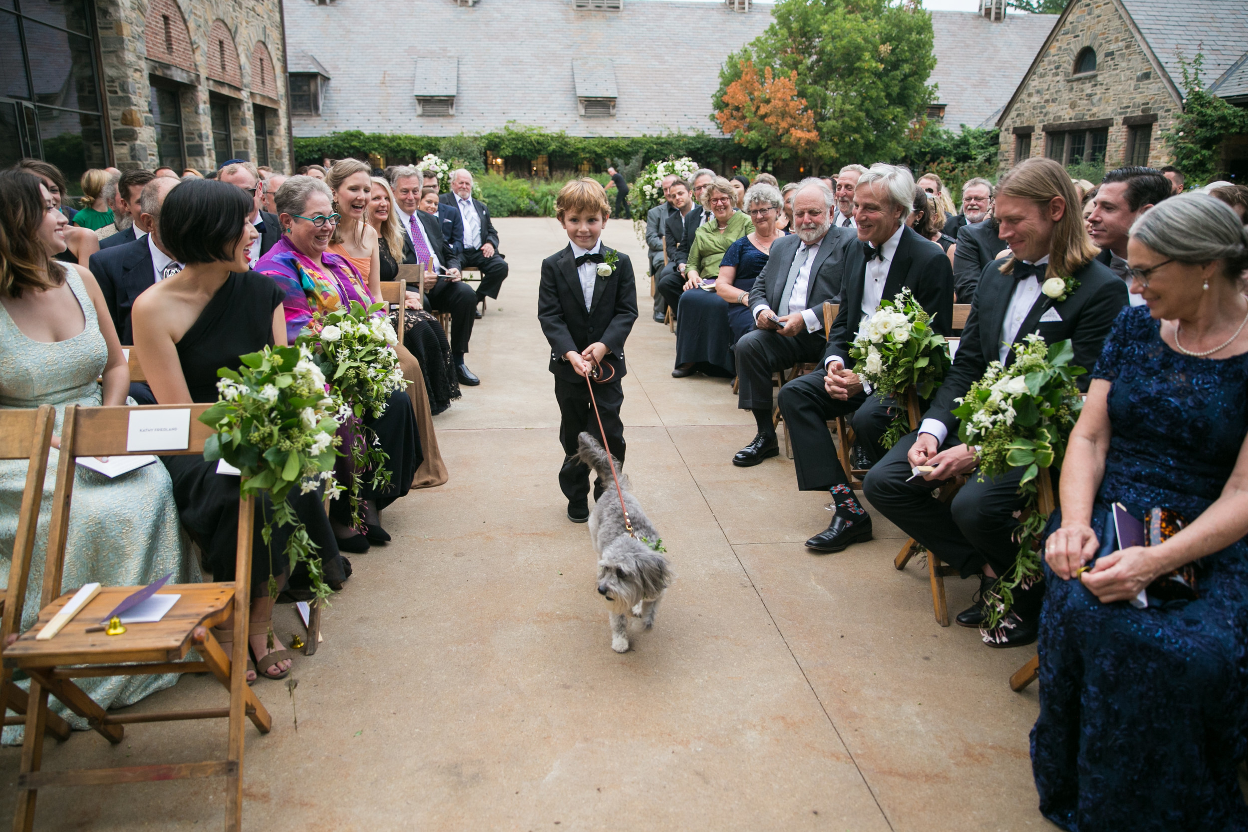 Wyatt Friedland walked Silver down the aisle at a wedding in Tarrytown, thanks to efforts coordinated by Pawfect For You, a dog babysitting business in Malverne.
