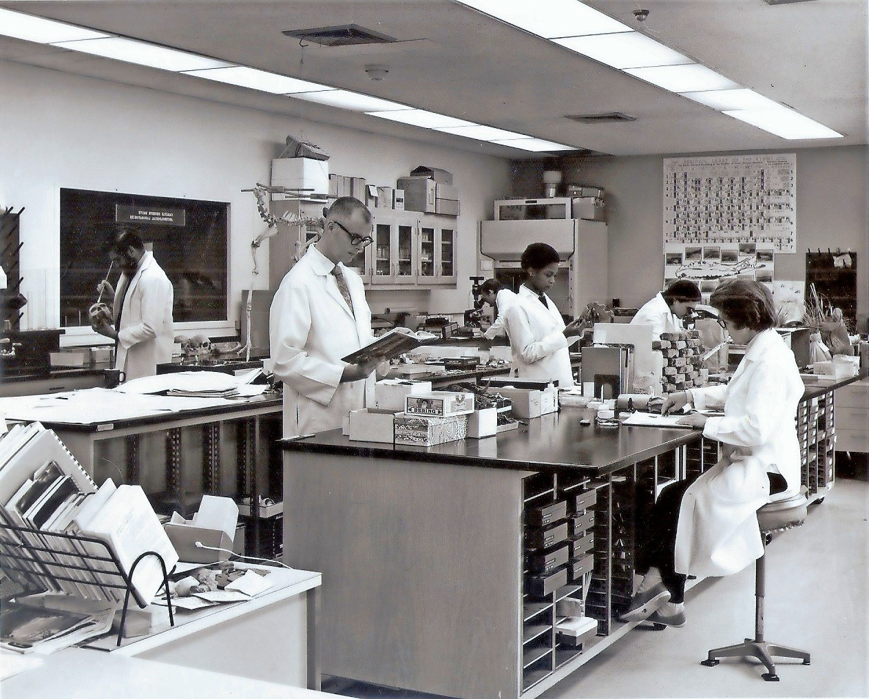 Researchers in a laboratory at Garvies Point Museum and Preserve in 1970.