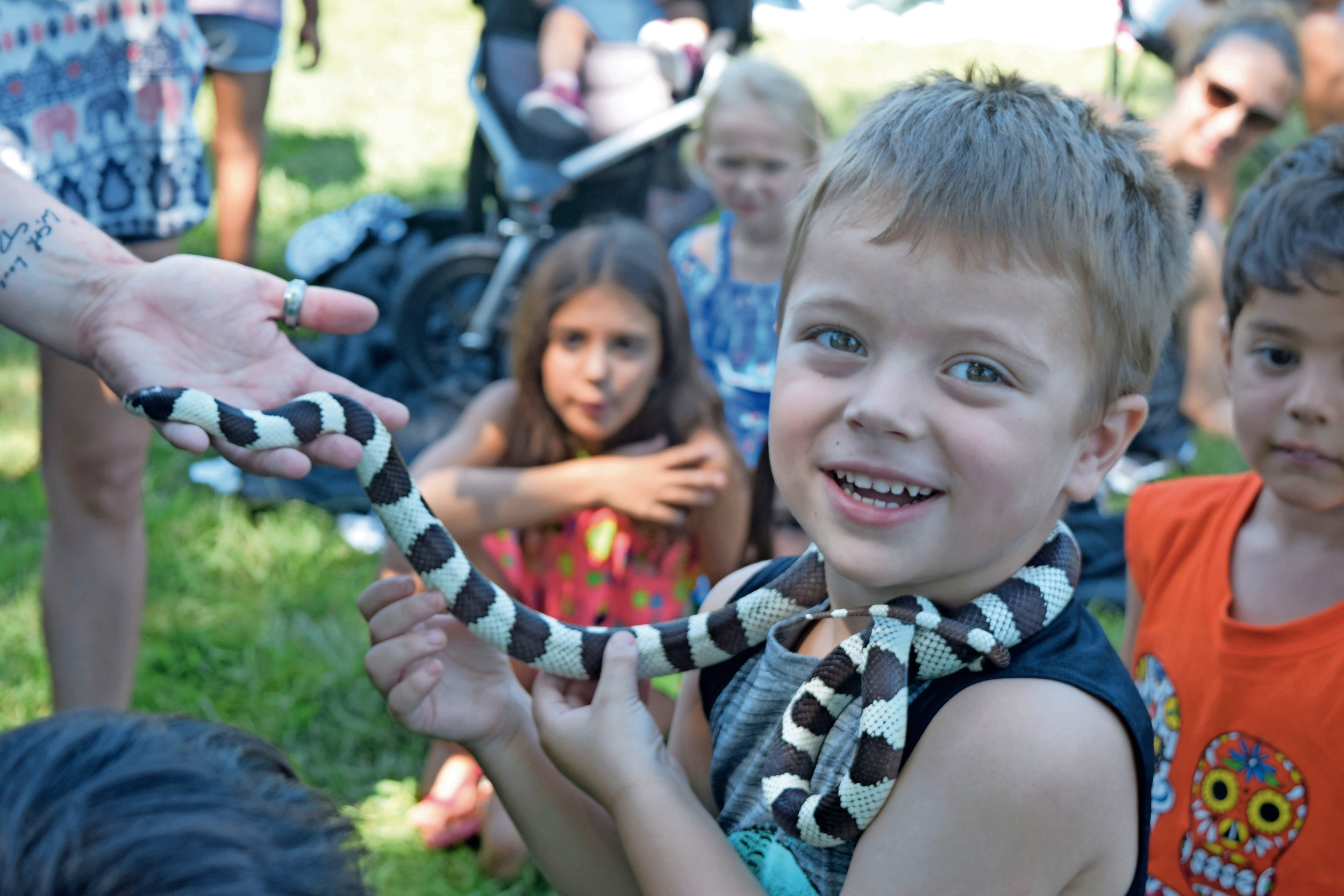 Aidan Mackey, 4, made a slithery new friend at the Town of Hempstead's Petland Parties program at Forest City Park on Aug. 1.