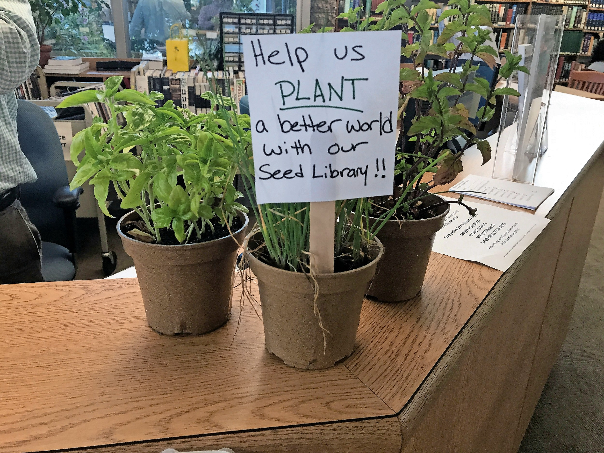 Patrons will be able to grow plants, using seeds from the library, at a new community garden.