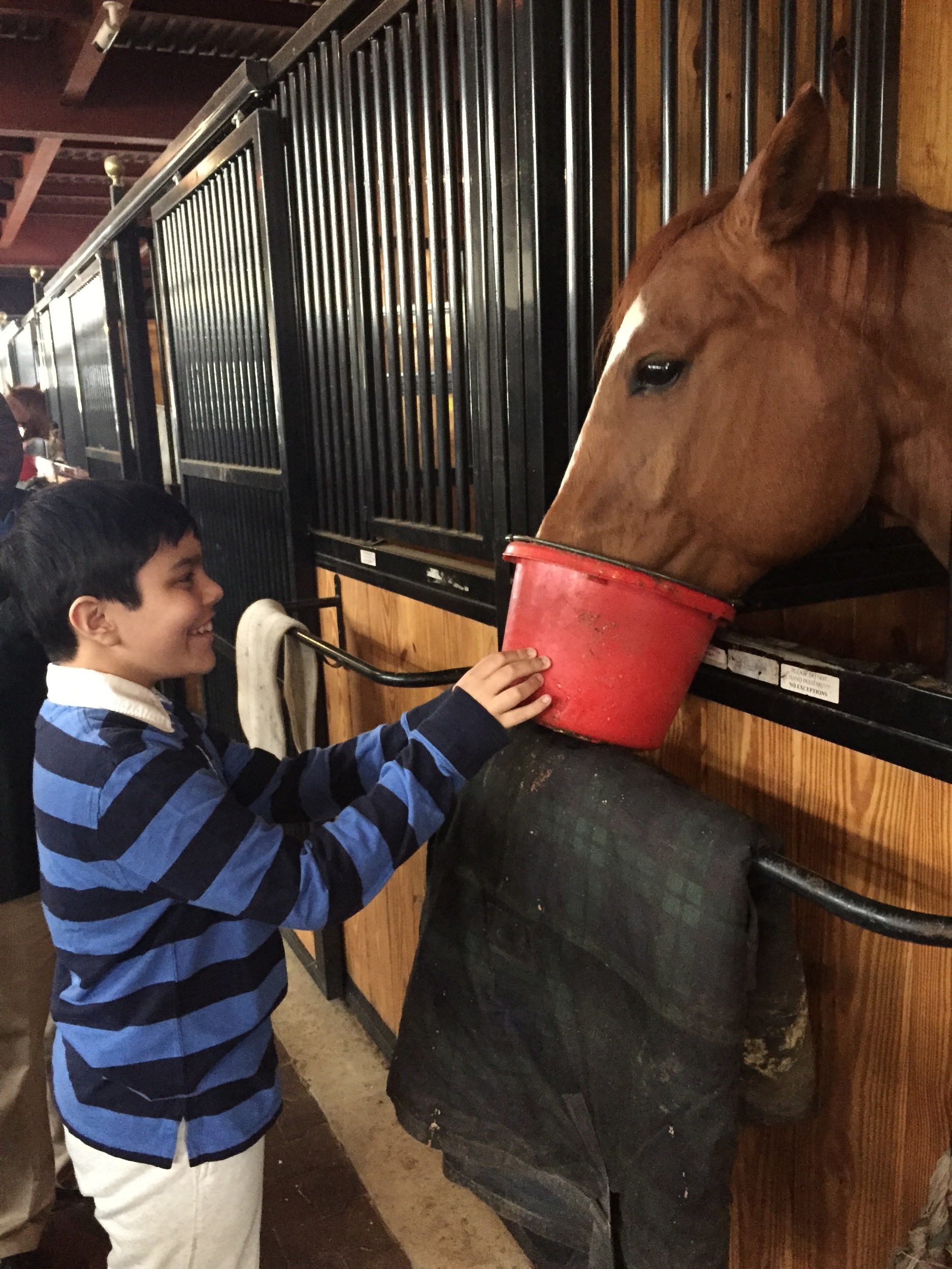 A student from the Gersh Academy fed a horse at the center as part of a therapeutic program for people on the autism spectrum.