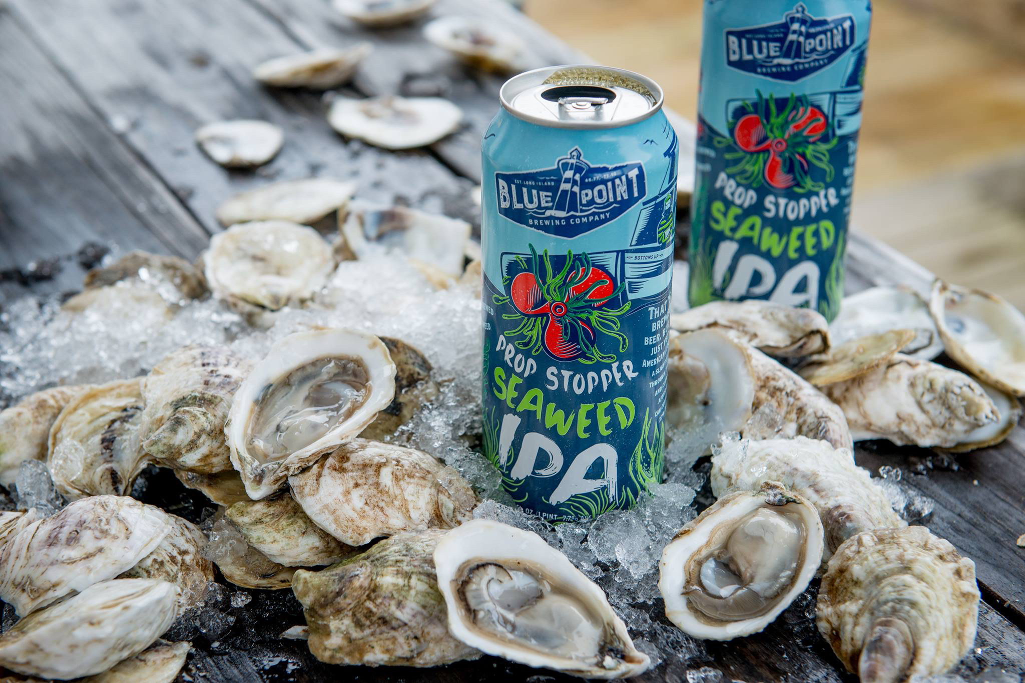 Blue Point Brewing Company Is Sponsoring The Second Annual Long Beach Oyster Festival On Sept