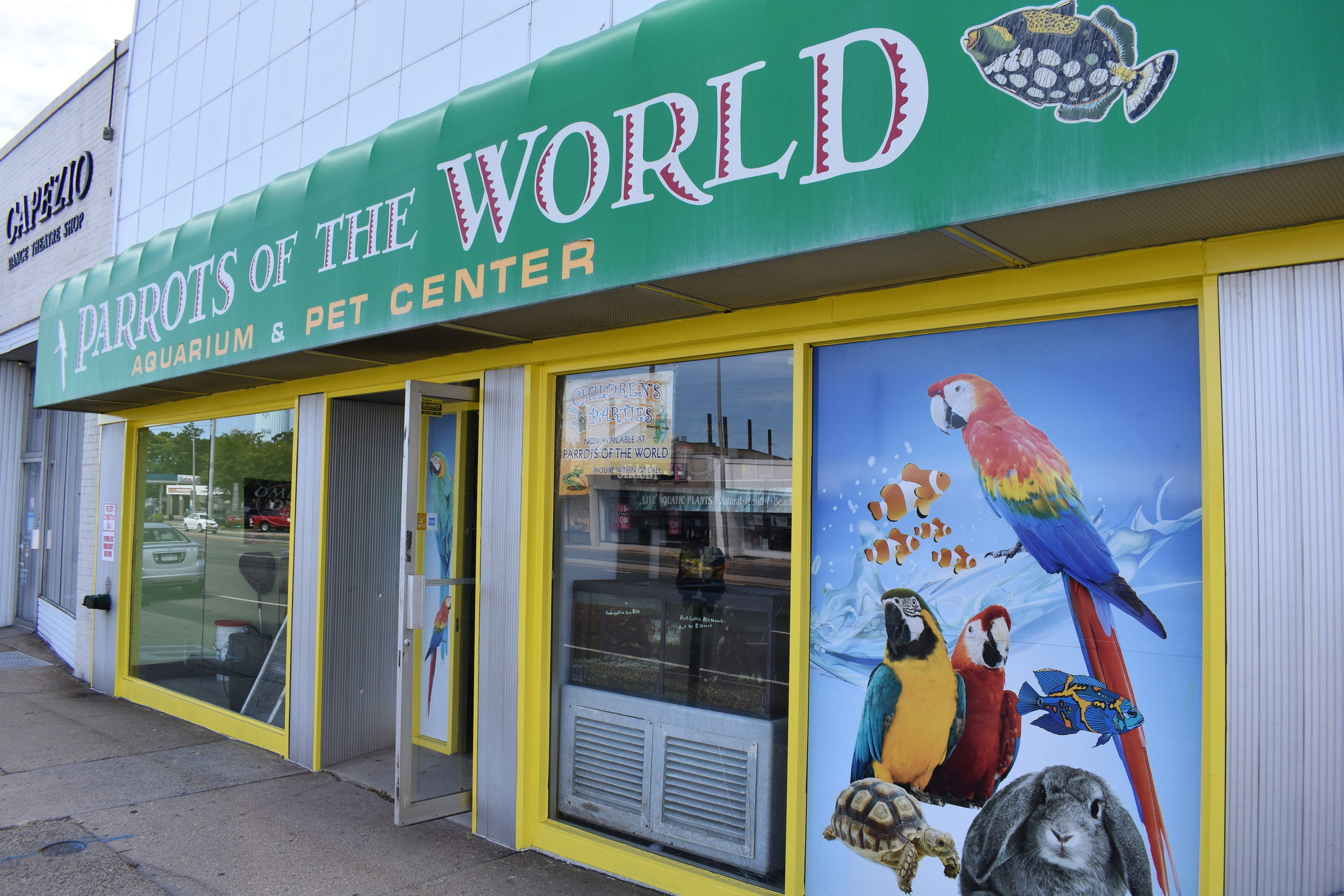 Parrots of the World, Marc Morrone's pet store on Sunrise Highway, has been in Rockville Centre since 1978.
