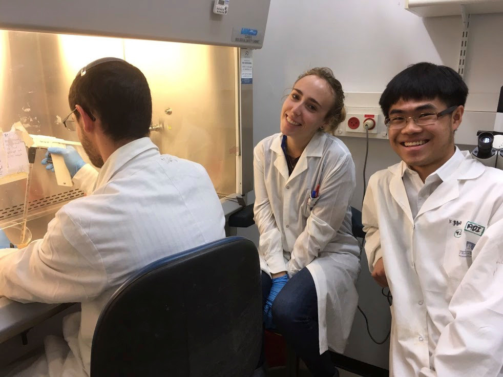 Weizmann Institute mentor David Bassan, with his back to the camera, split T-cells in the laboratory with student lab partners Tzippora Chwat, center, and Yee Kwan Lee.