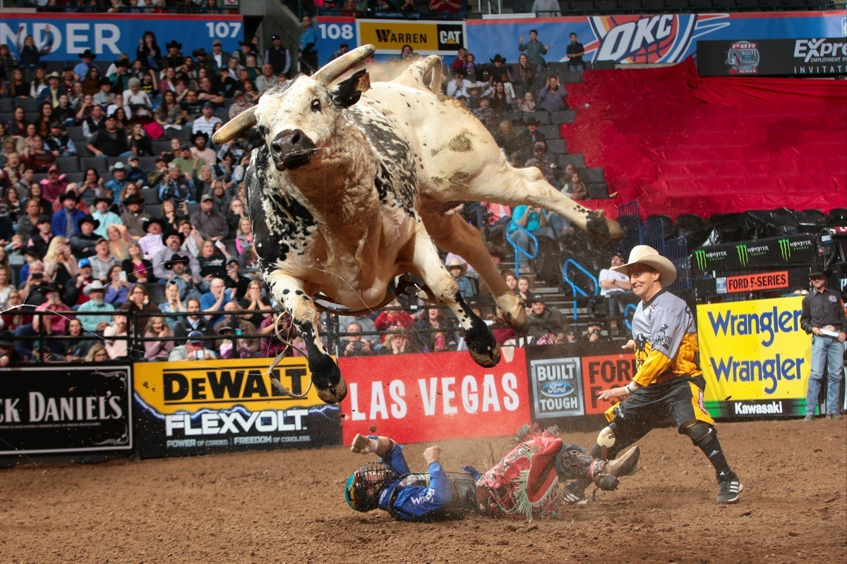 Rider Cody Nance ends up under his bull, Air Time, during a recent competition.