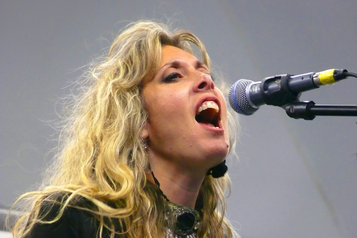 Suzanne G. Levy, a.k.a. Stevie Nicks, offered strong vocals at a concert preceding the fireworks.
