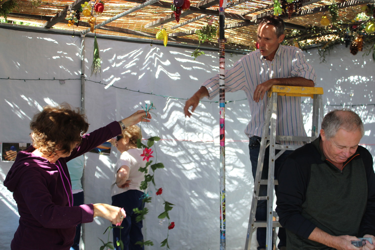 Sisterhood members and Melosevich, on ladder, decorated the sukkah on Oct. 4.