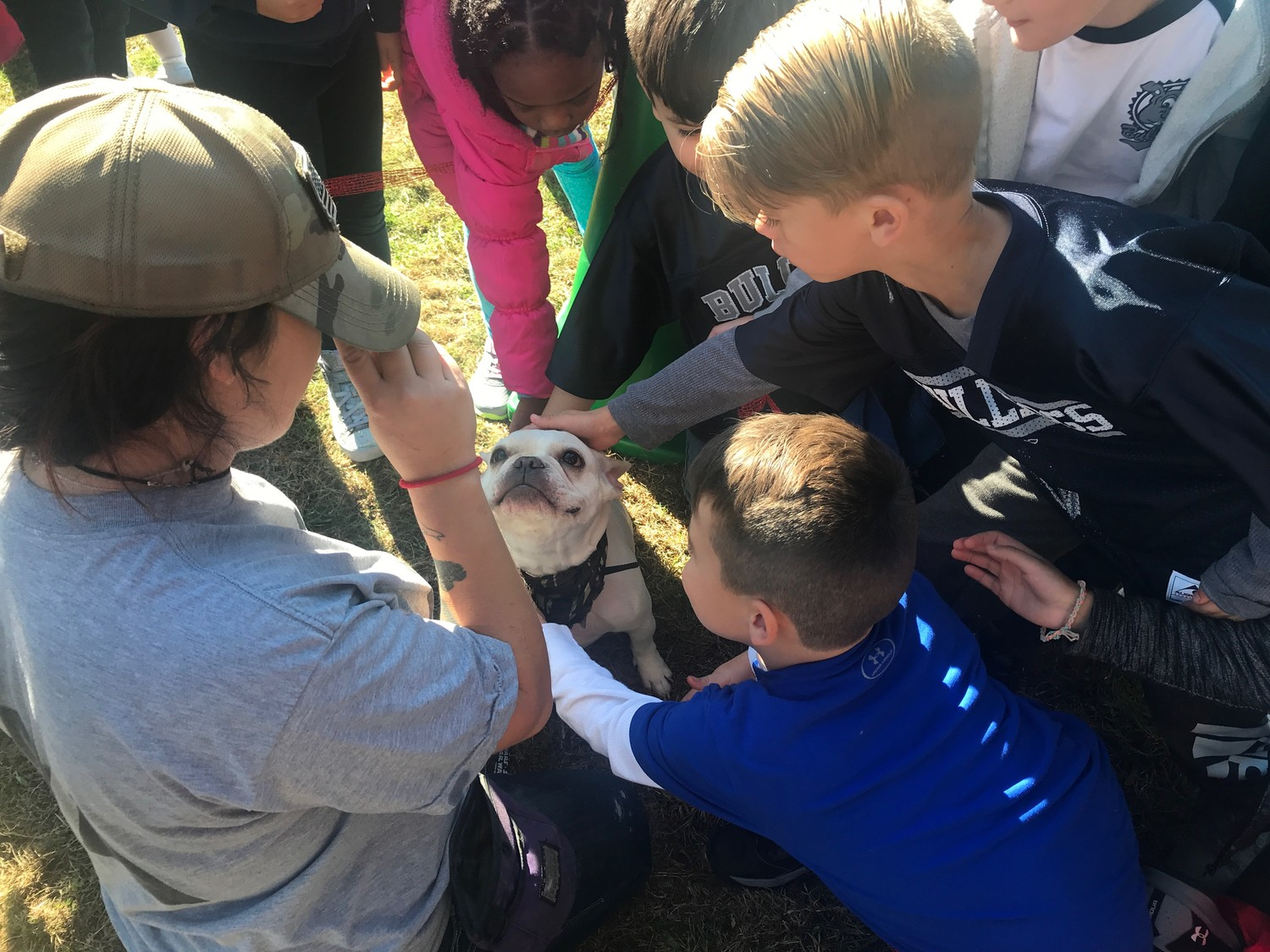 Boba, the French bulldog, received much loving attention from Ogden Elementary School students.