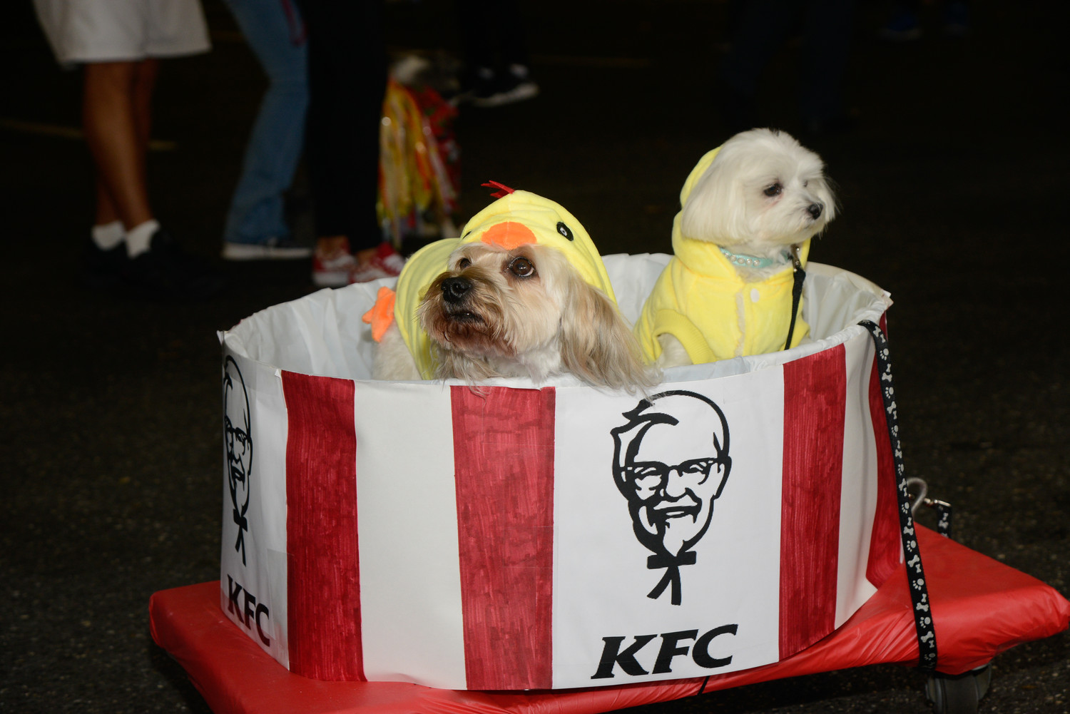 "Just a couple of KFC ""chickens"" in a bucket."