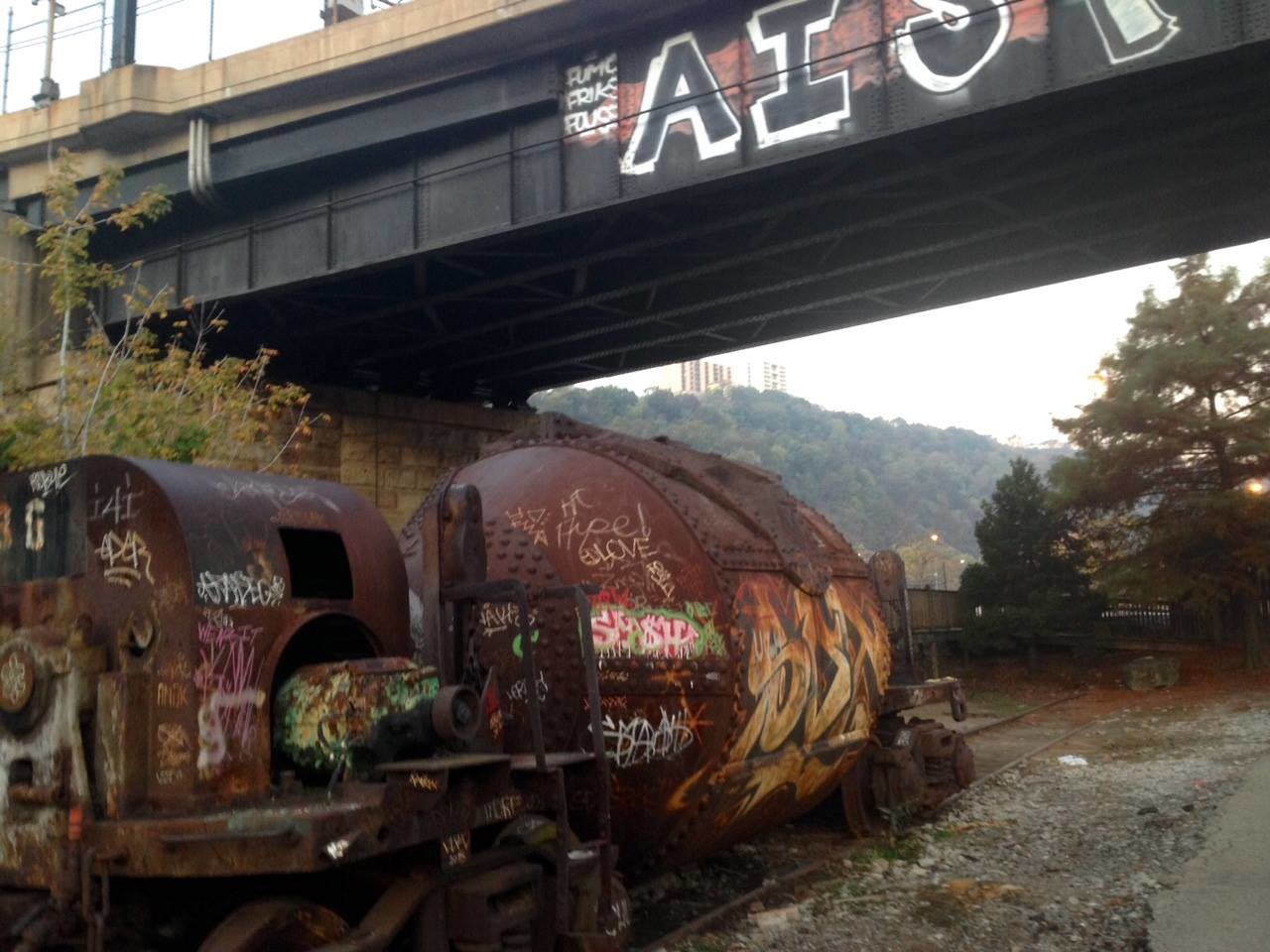 Rusty train cars sit idle on abandoned tracks, monuments to Pittsburgh's industrial past.