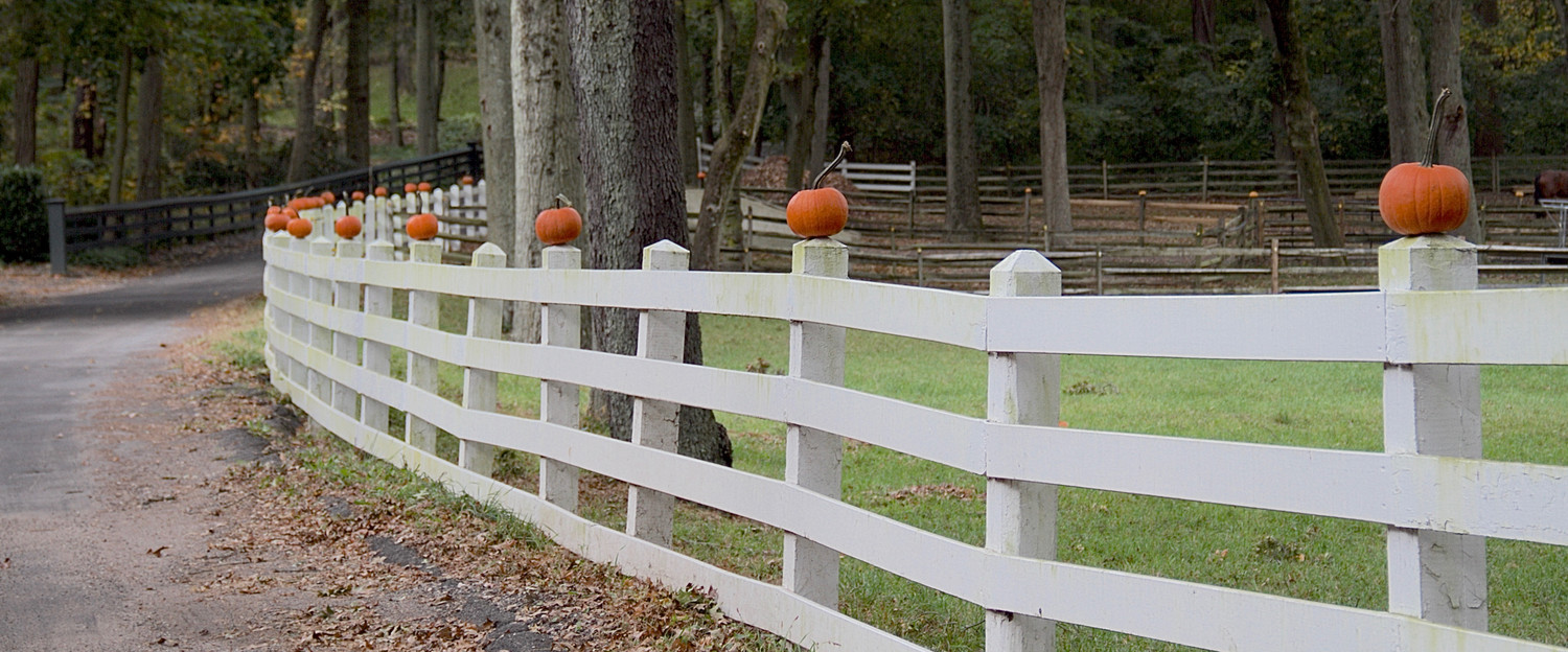 An Upper Brookville estate decorated its fence with pumpkins creating a simple, but unique fall statement.
