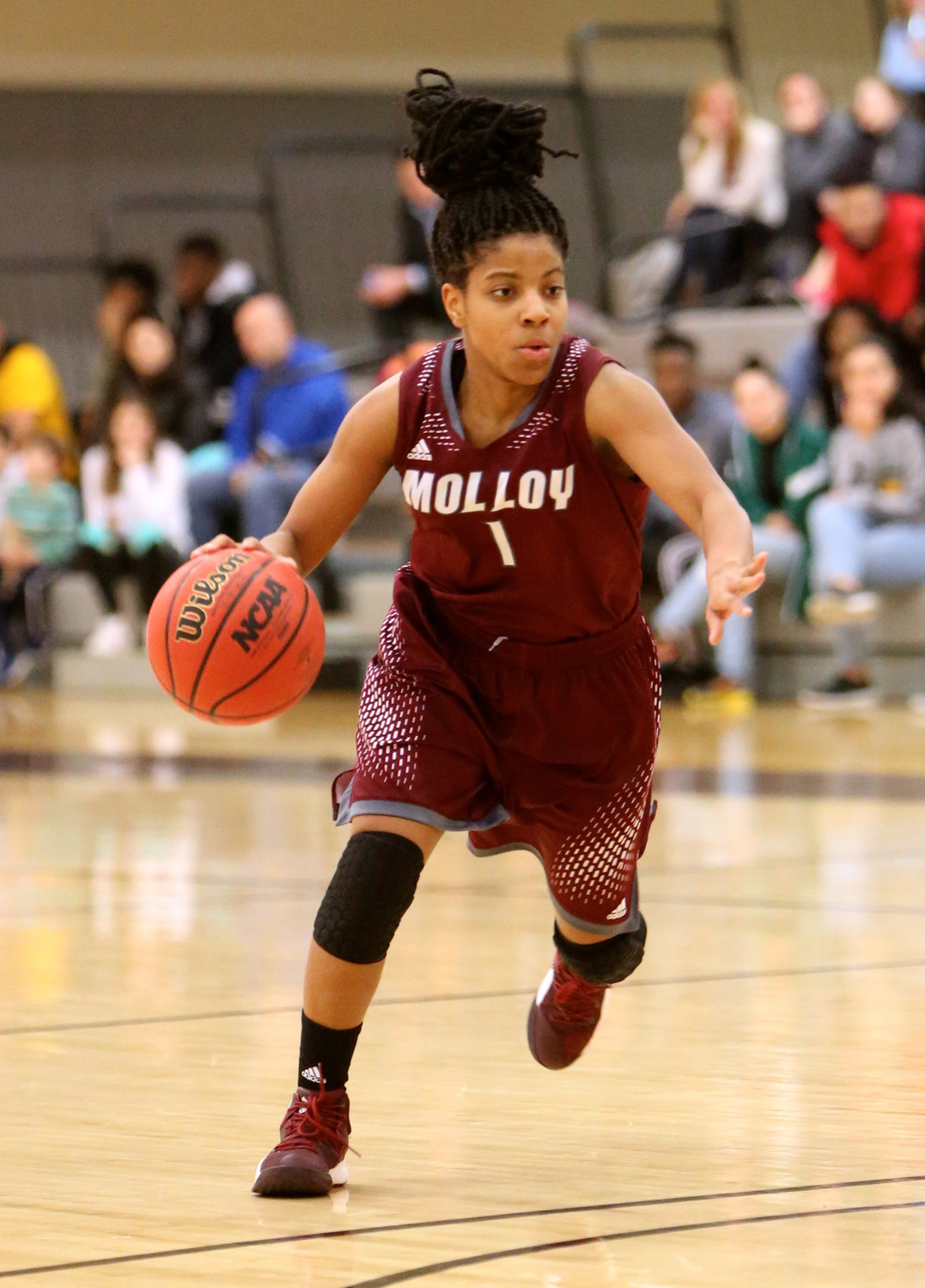 Ihnacinse Grady started 31 games for Molloy last season and led the Lady Lions in minutes per game at 34.9. She averaged 8.8 points and 2.9 assists.