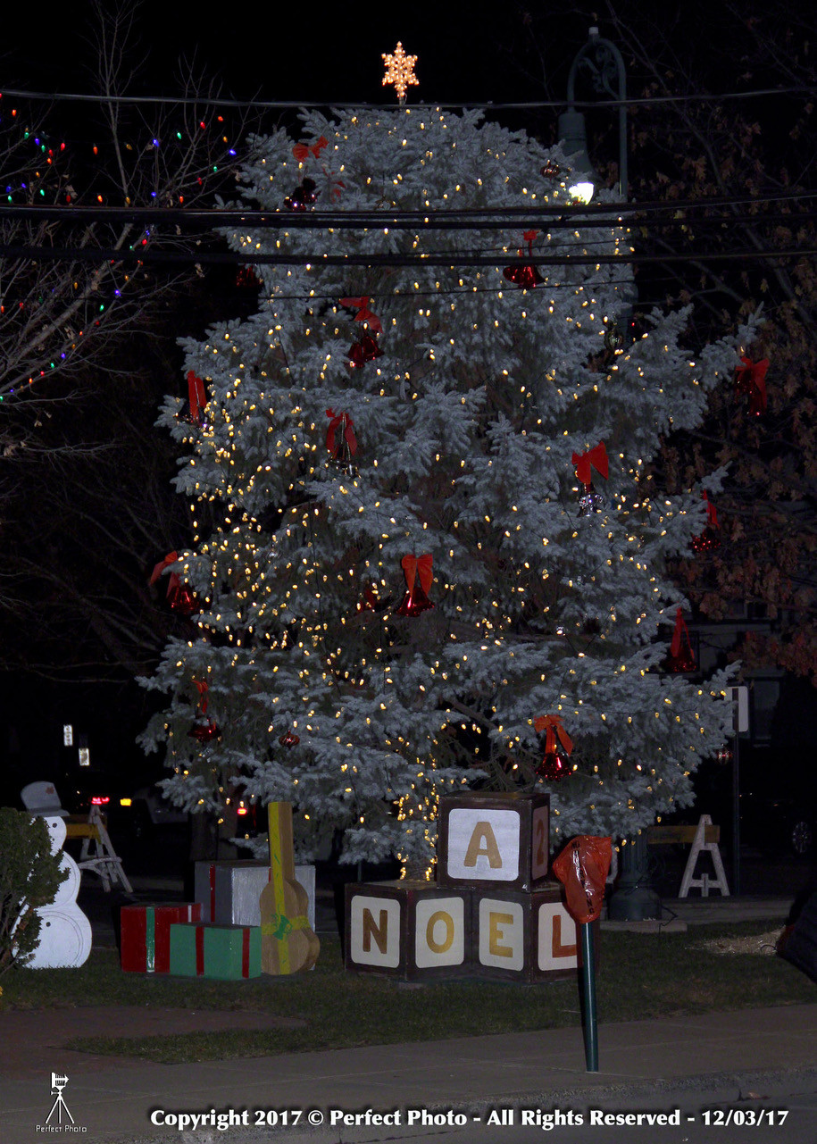 One of the highlights of the holiday celebration was the lighting of the Christmas tree at the intersection of Stauderman and Forest avenues.