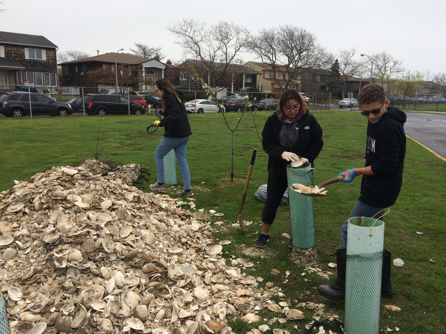 In the spring, Long Beach High School students bagged used oyster shells to use for research in the campus' pond.