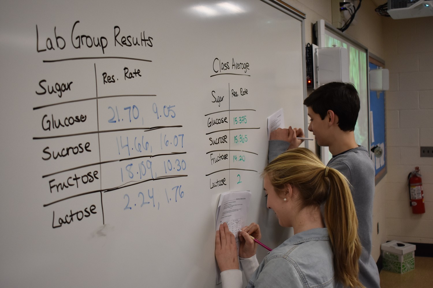 South Side High School freshmen Anna O'Sullivan and Dylan Saltzman recorded data gathered with carbon dioxide sensors during a lab on alcohol fermentation.