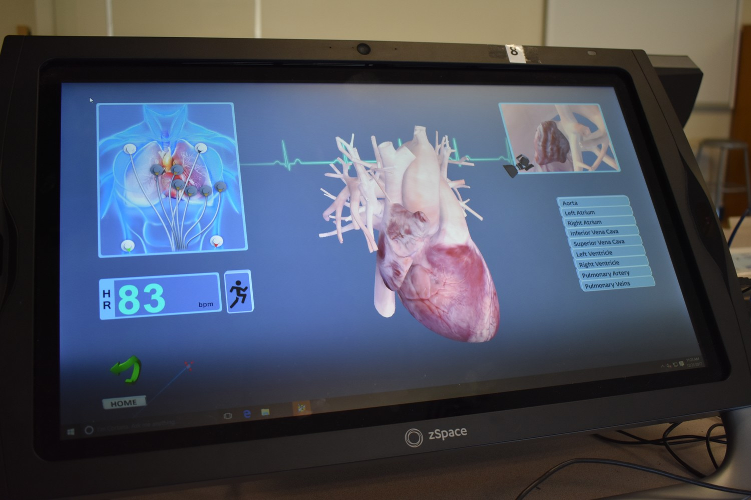 Users can virtually grab a beating heart out of the zSpace screen.