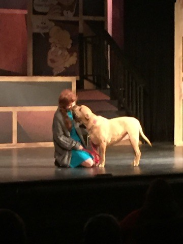 Annie charms her way into everyone's hearts in BroadHollow Theatre Company's staging of the beloved musical in Elmont.