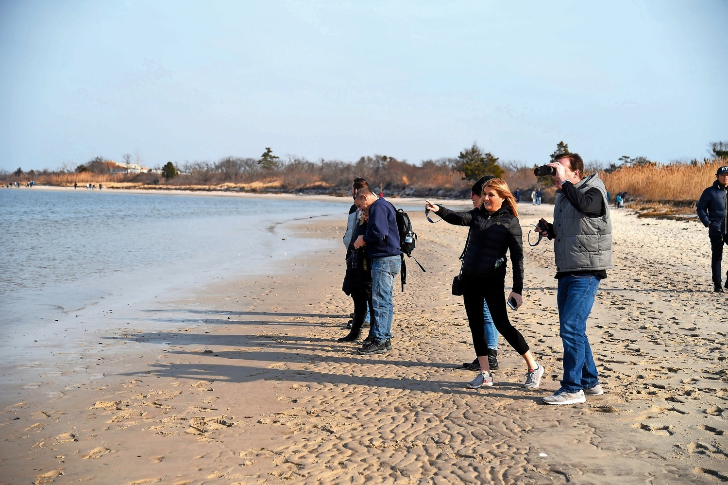 Participants looked for seals at Jones Beach Field 10 during the Jan. 21 walk.