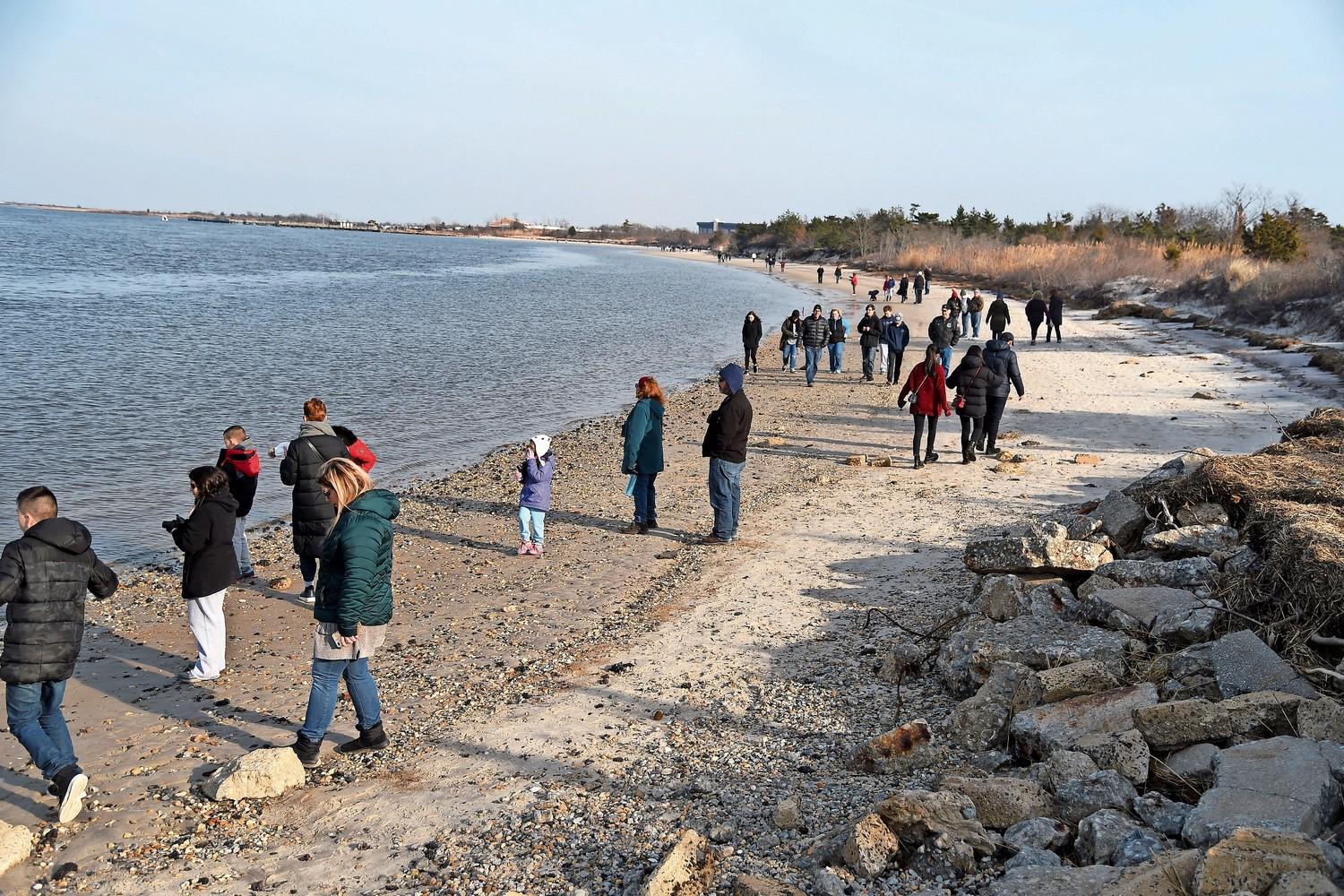 The seal tours at Jones Beach State Park attract people from across Long Island.