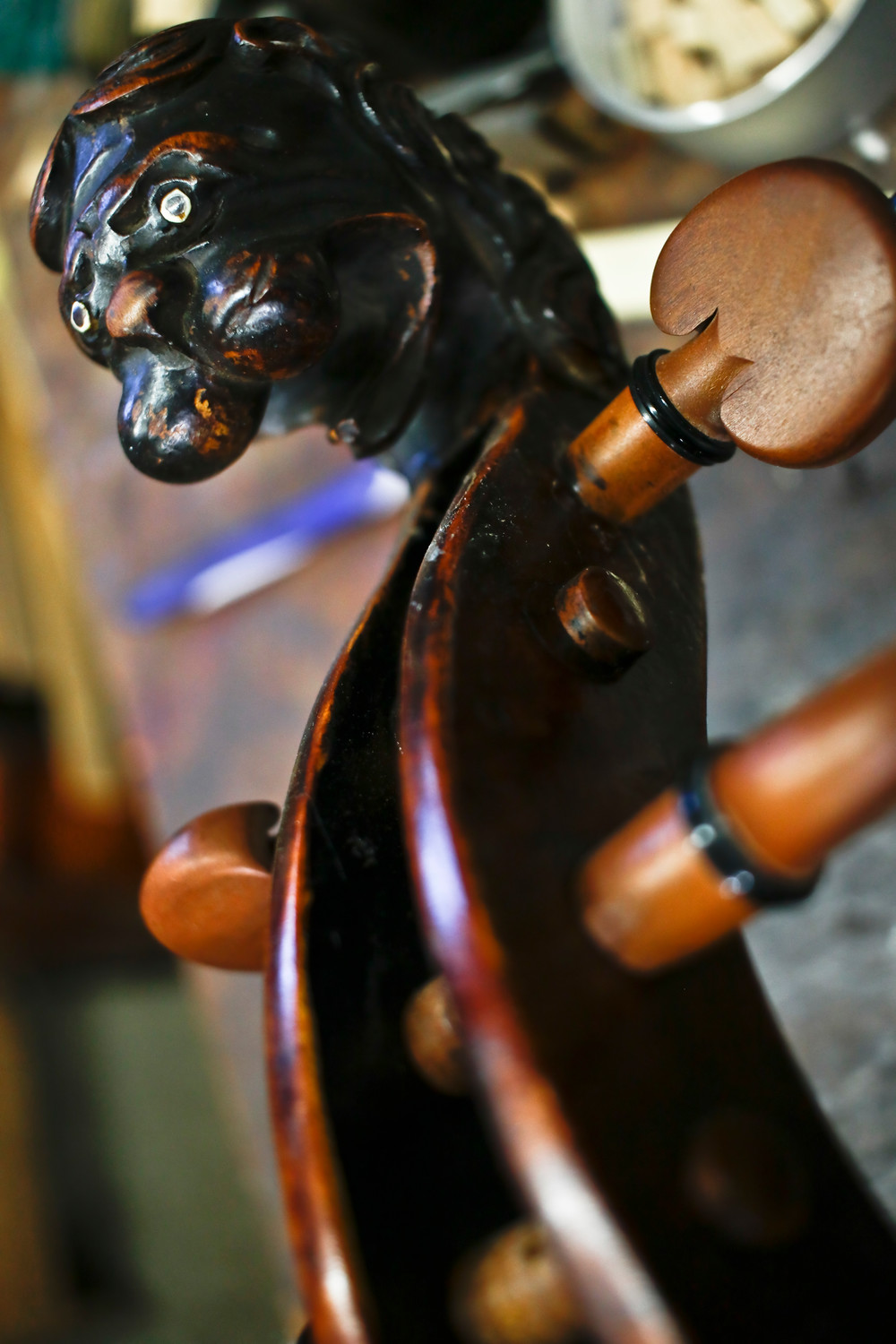 A Stainer Cello from the 1700s was the only one in the shop, with a uniquely carved lion's head scroll.