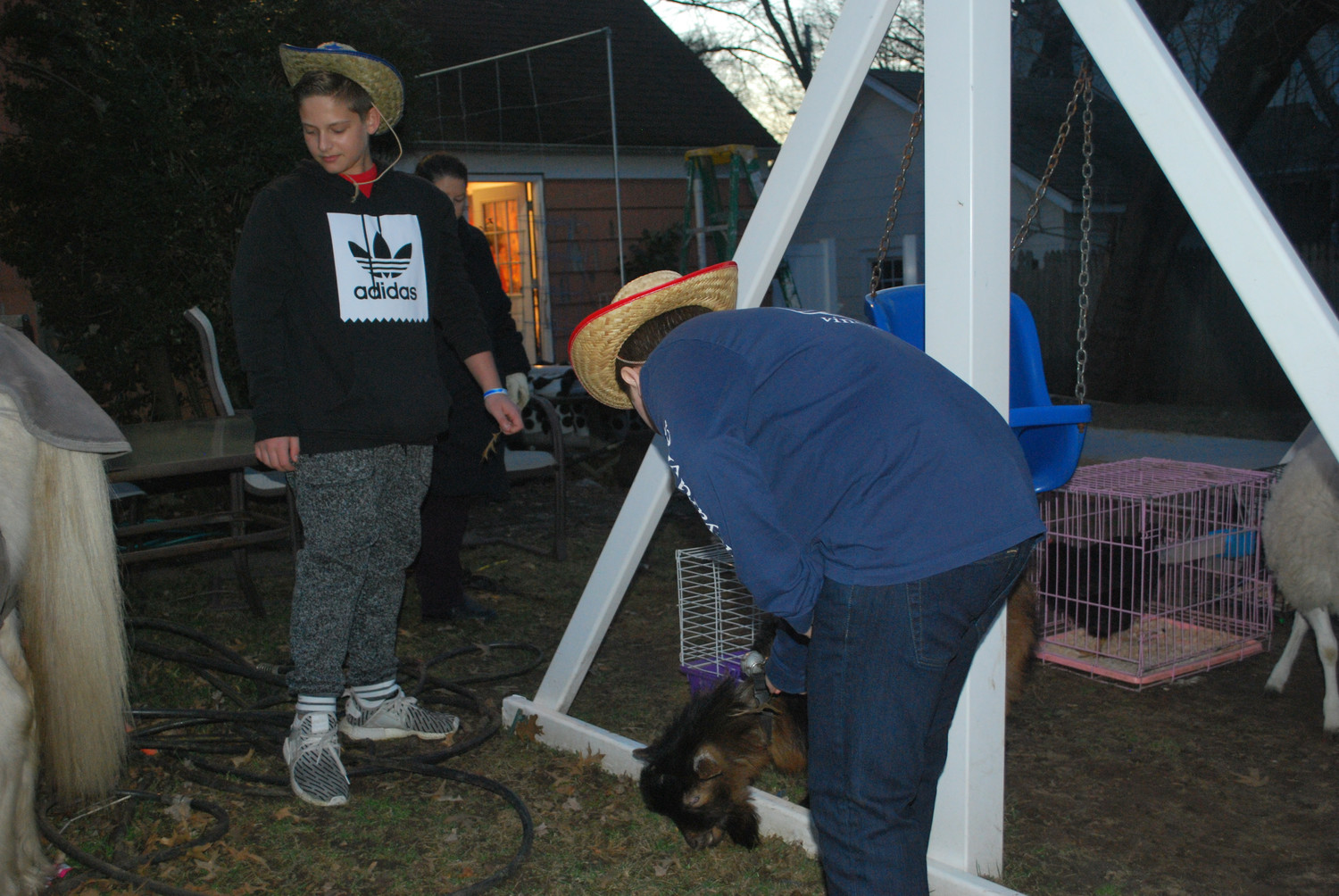 Daniel Rick, left, and Shawn Bronfman fed the farm animals in Tevye's Garden at the Purim party.