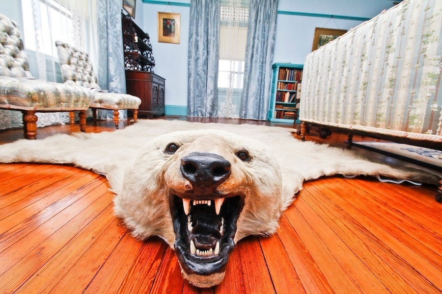 Putting teddys house back together again pt 2 the animal hides this polar bear hide greets visitors at m4hsunfo