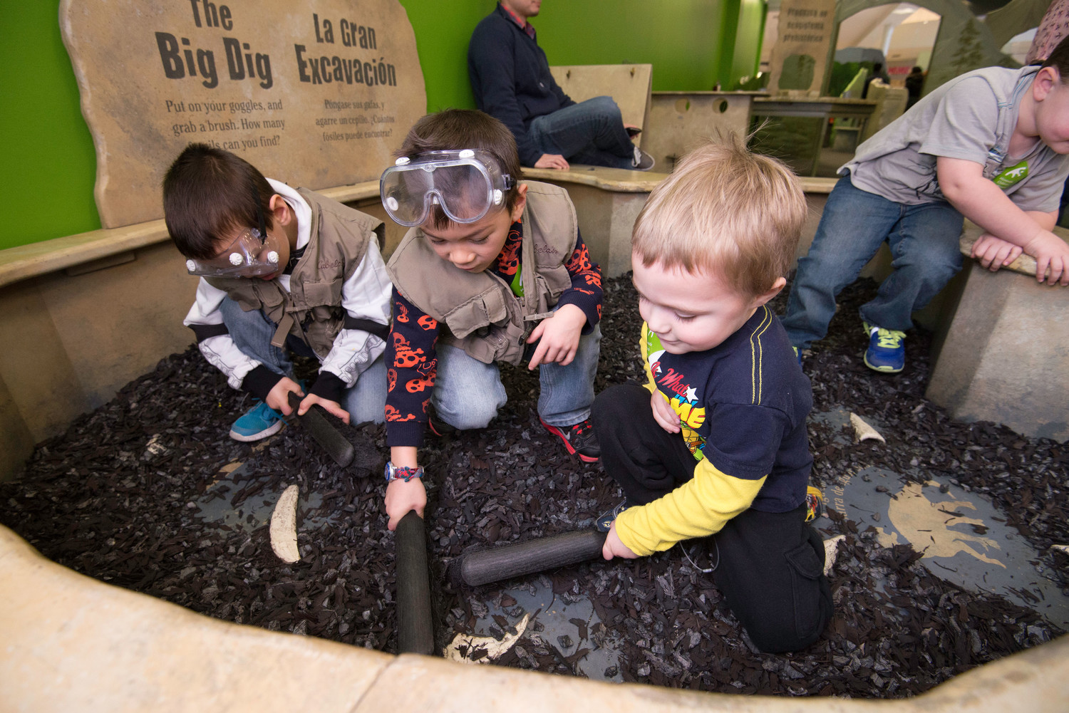 Museum visitors become junior paleontologists as they put on goggles and research vests and search for fossils at the bottom of the dig pit.