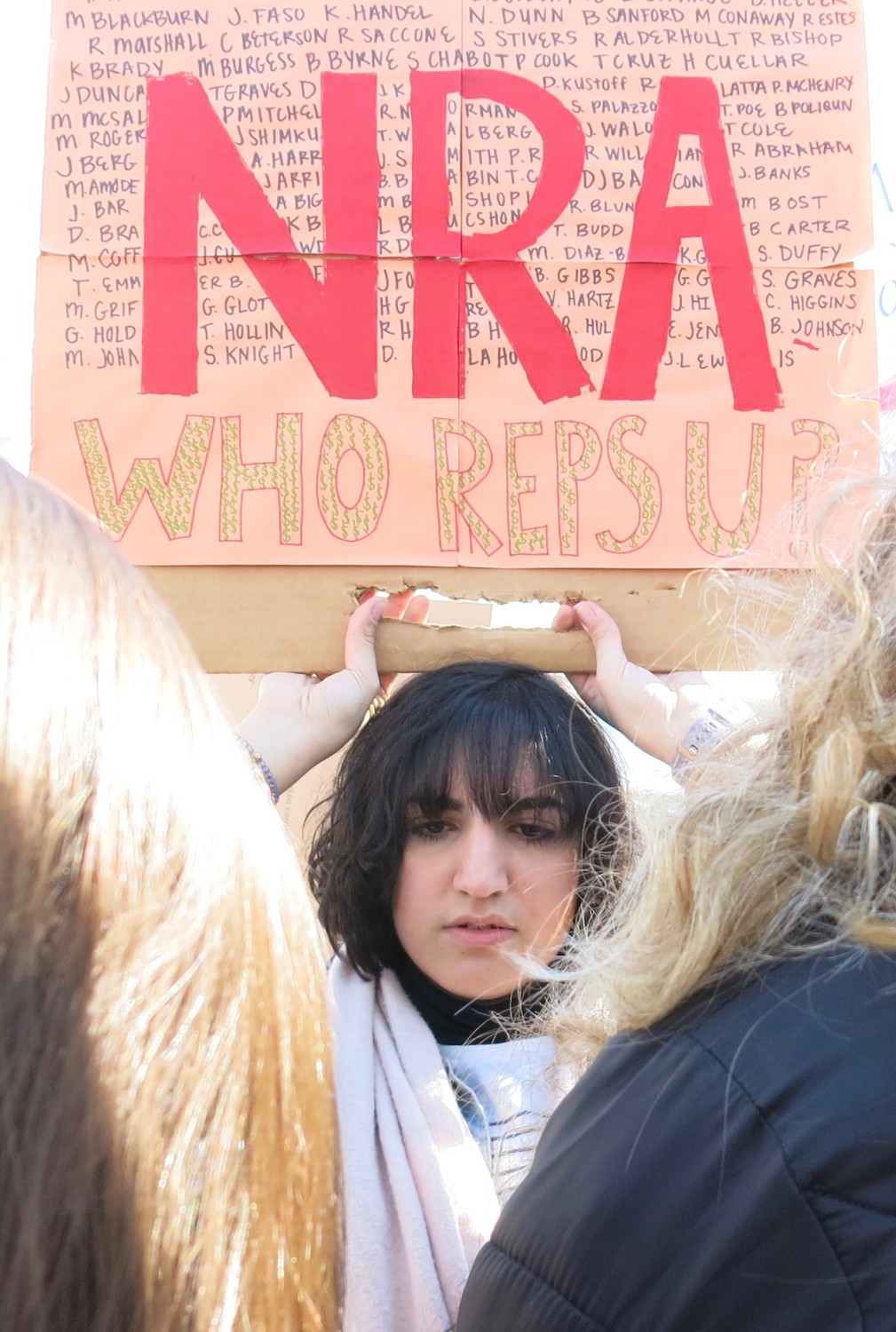 There were many calls to stop the NRA from continuing its influence over elected officials.