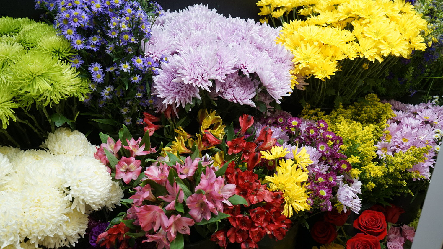 Gralitzer said she orders flowers from all over the world including Holland and Ecuador.