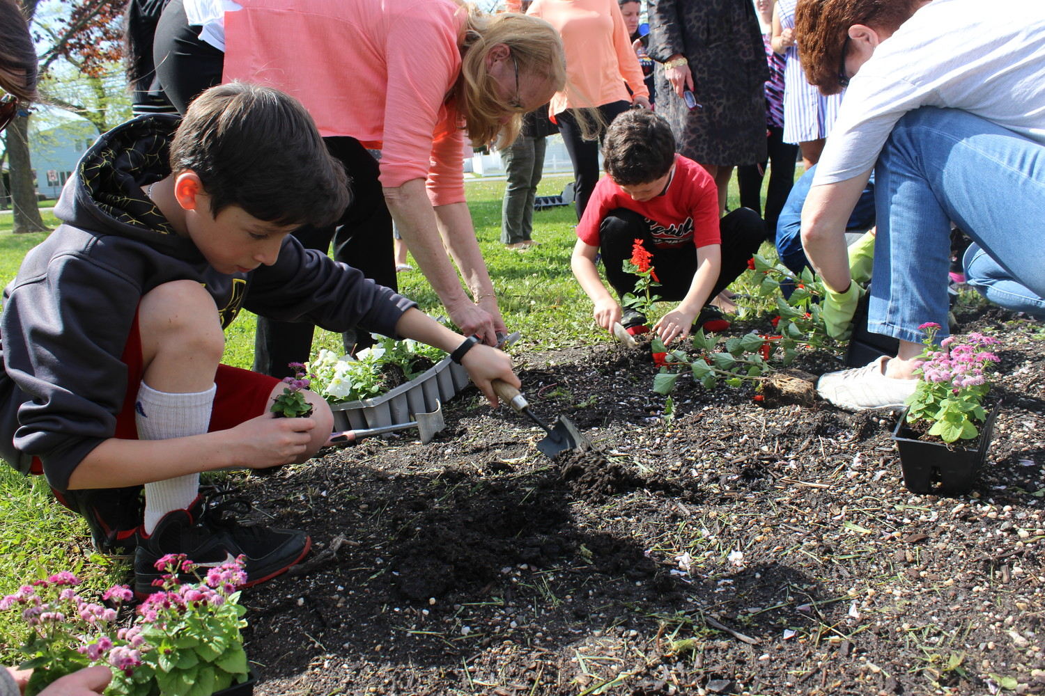 Alex Frank, a fourth-grade student at Bowling Green Elementary School, spent time after school planting flowers with his friends.