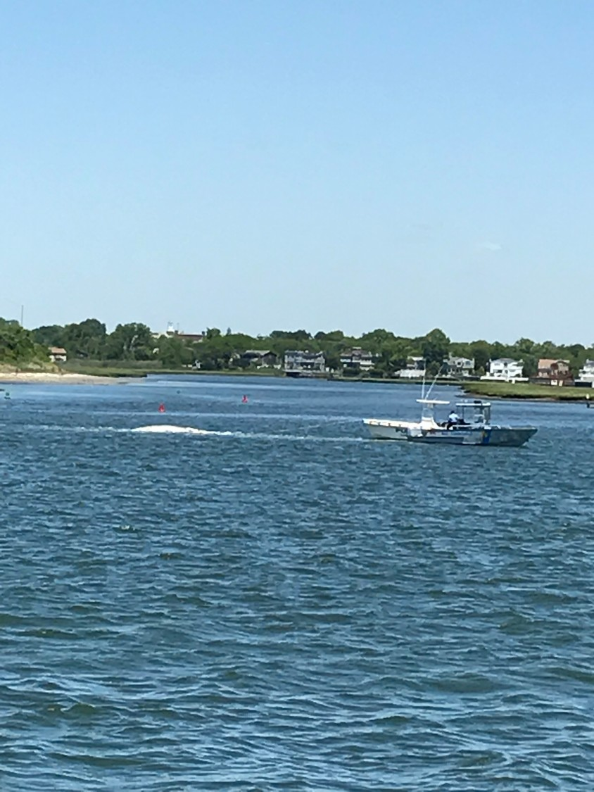 Town of Hempstead Bay Constable towing the whale.