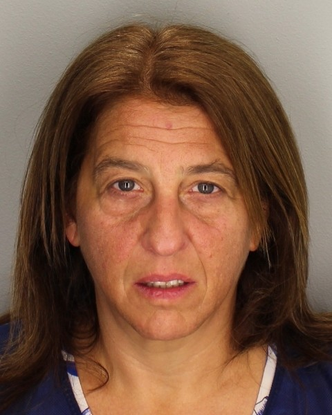 Vicki M. Goldberg was arrested and charged with 12 counts of various drug posession charges