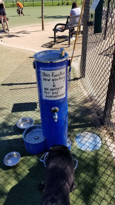 A fountain at the Bay Park Dog Park was broken from February until last week.