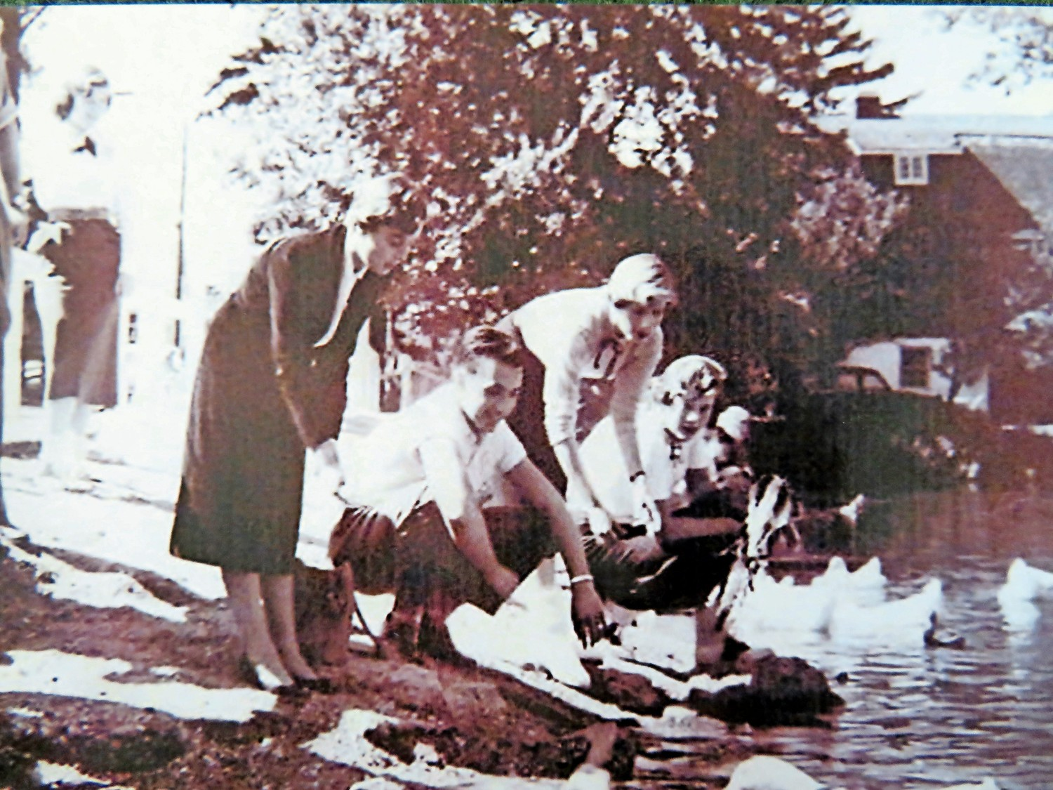 Students would often feed ducks after school at Collin's Pond in the 1950s.