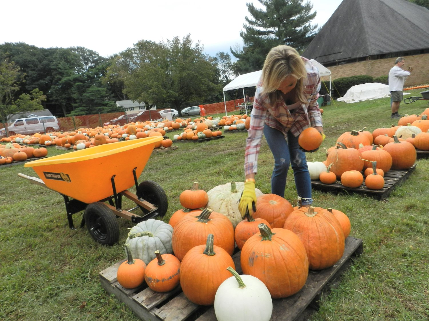 Sea Cliff resident Christina Volz knows it's all in the presentation, which she worked to perfect in United Methodist Church's pumpkin patch.