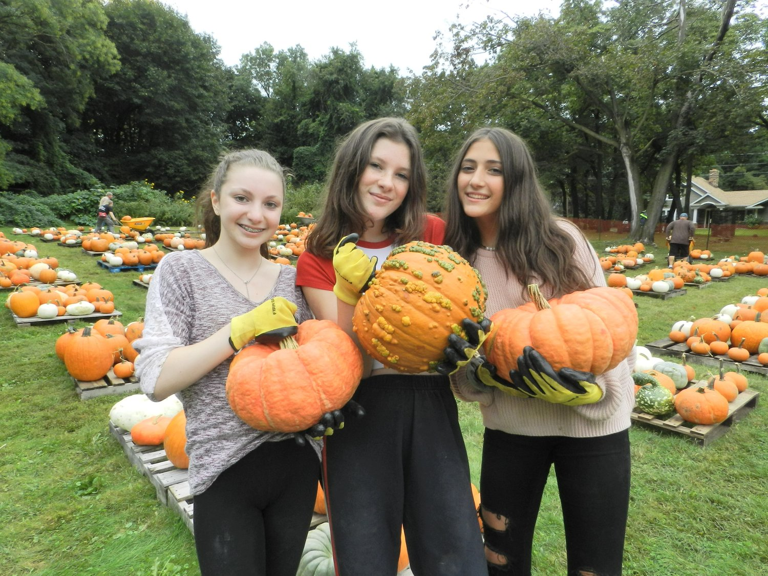 North Shore High School students Halle McGrath, left, Finley Livingston and Nora Schatz held up some heaping pumpkins, which weren't even the biggest of the bunch.