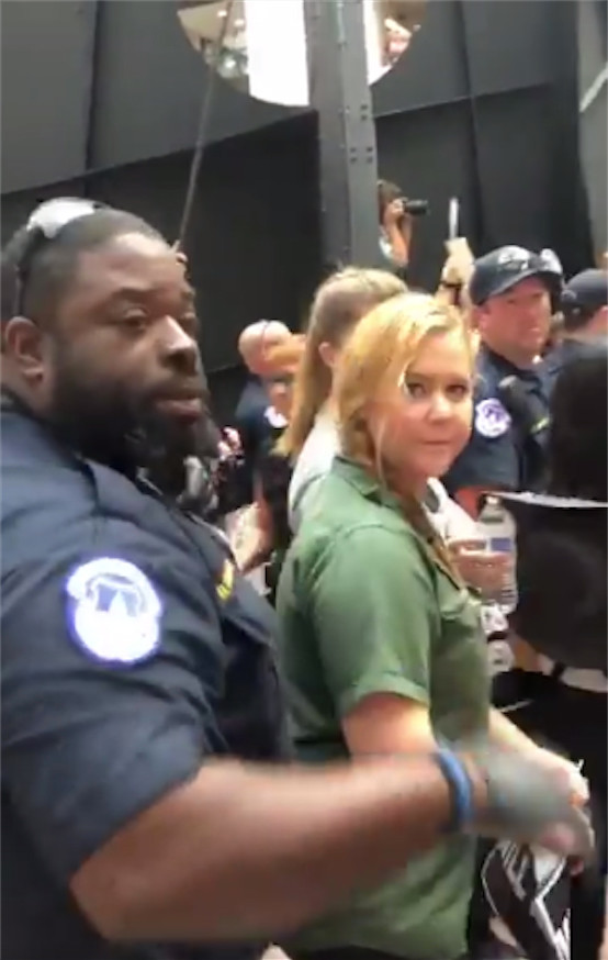 Amy Schumer got arrested on Oct. 4 while rallying against then-Supreme Court nominee Brett Kavanaugh, who was confirmed to the highest court last Saturday.
