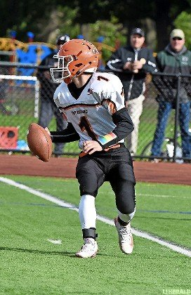 Senior quarterback Andrew LaBarbera had a first-quarter touchdown for the Rocks in last Saturday's defeat at Seaford.
