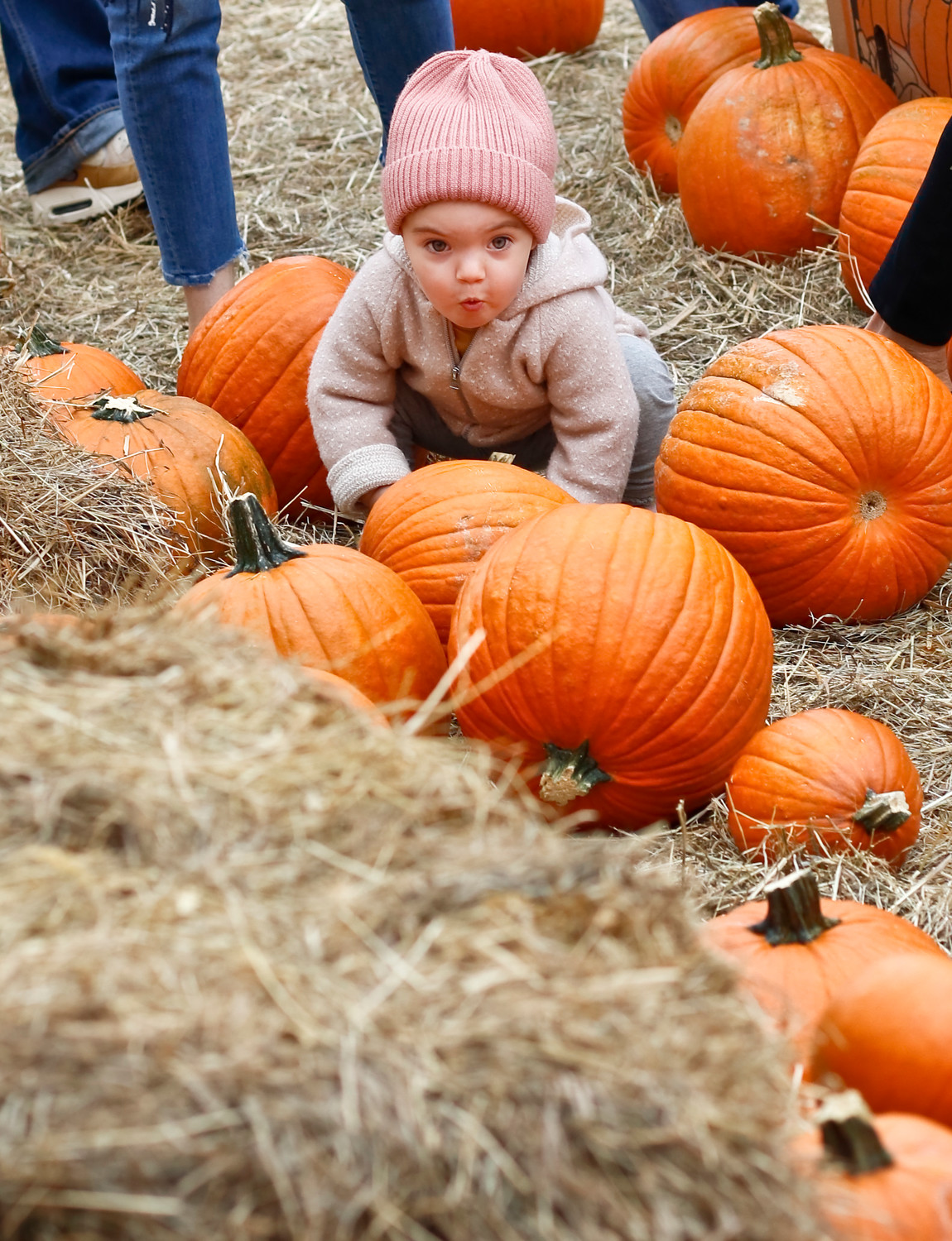 Isabel Combs, 1, picked her favorite pumpkin in the patch at the city's annual Fall Festival at Kennedy Plaza last Sunday.