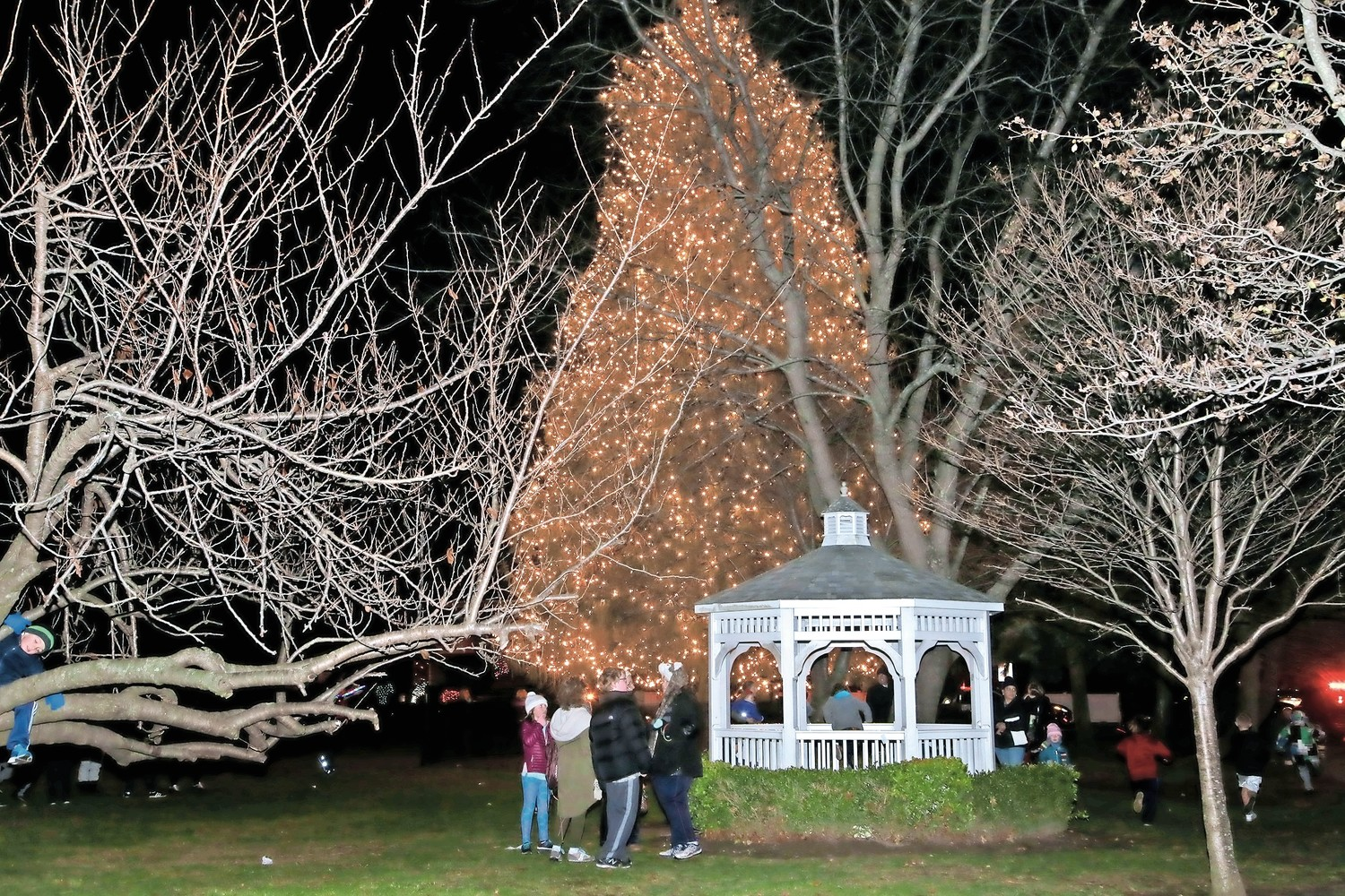 The tree lit up the village green.
