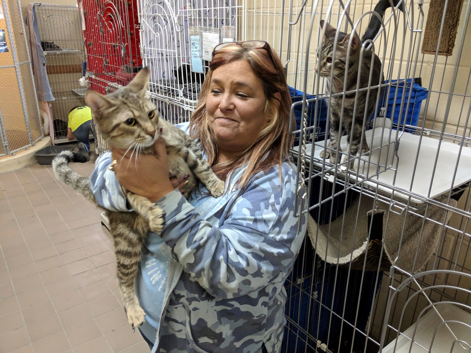 Last Hope Animal Rescue board member Doreen Simonson has worked with cats at the facility for two and a half years.