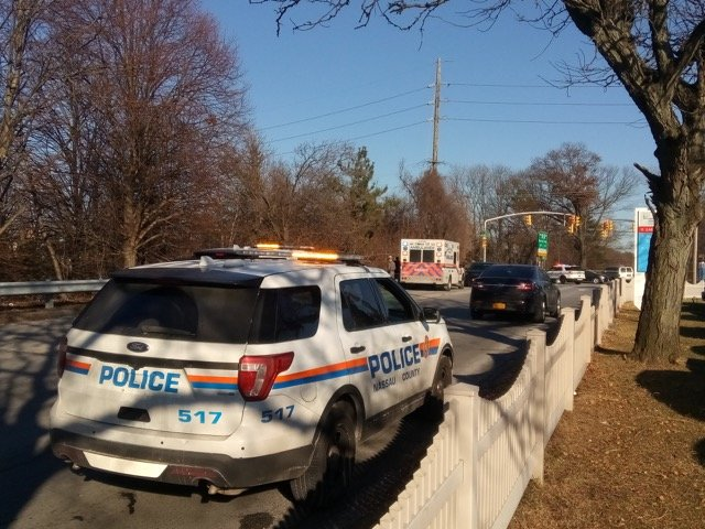 Police reported the discovery of skeletal remains in a wooded area near the Southern State Parkway.