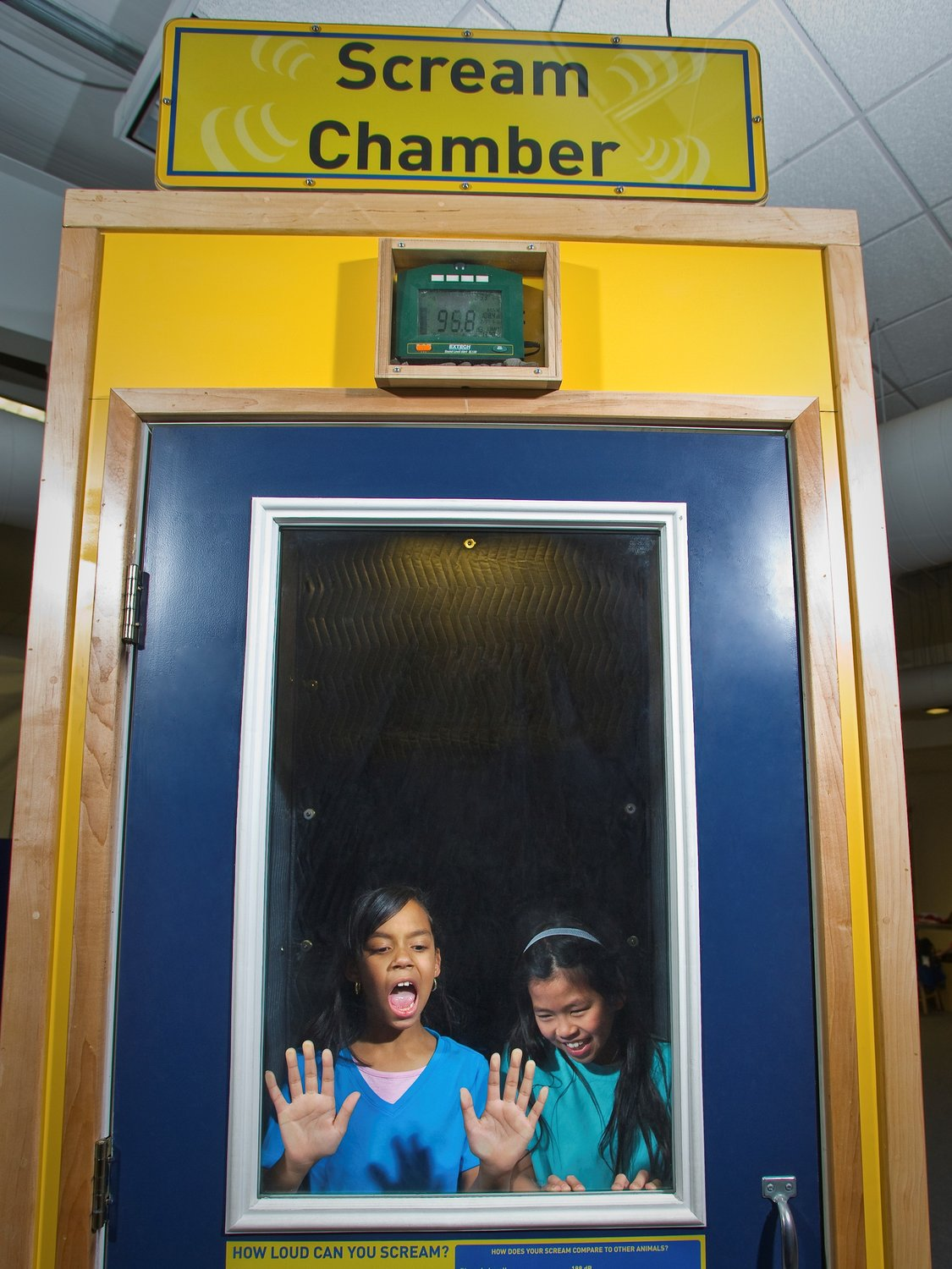 Kids can test their lung power as they learn about decibels in the Scream Chamber.