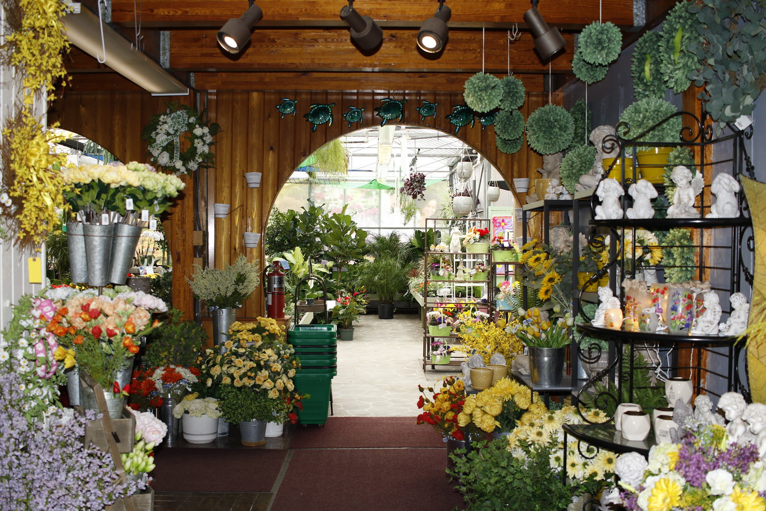 There are a wide selection of flowers and trees in the nursery's garden center.