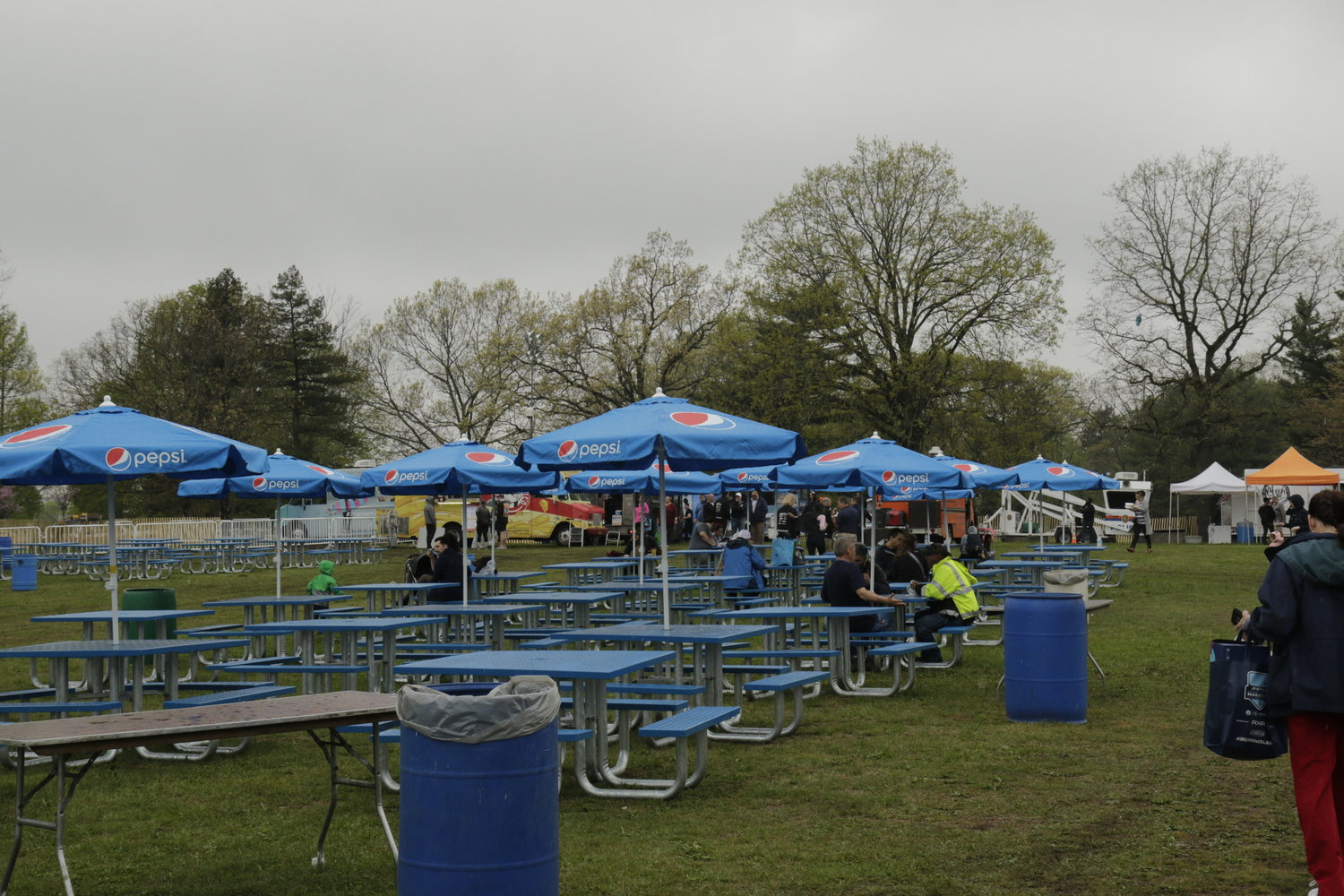 The picnic area at Eisenhower Park's Field 5 during the festival.