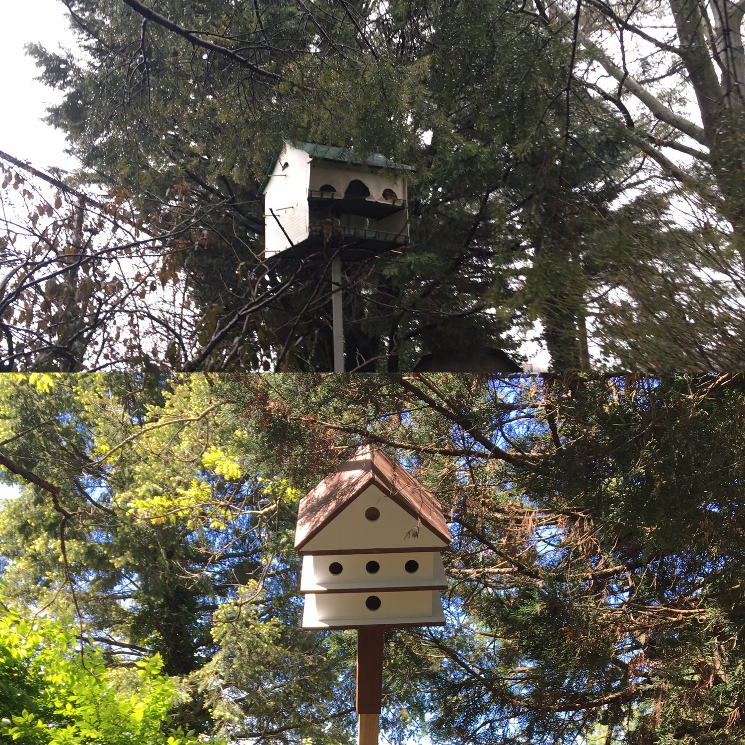 Some of the work included replacing old birdhouses.