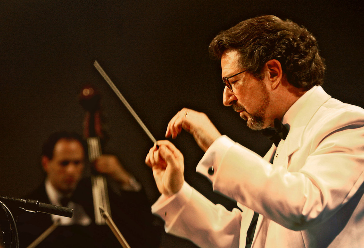 Nassau Pops Symphony Orchestra Maestro Louis Panacciulli and his group will return to Malverne on August 4.